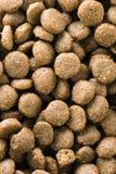 Bio nourriture pour des chiens Images libres de droits