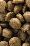 Bio nourriture pour des chiens Photographie stock libre de droits