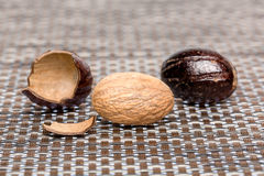 Bio nutmeg Stock Images