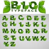 Bio oeil d'un caractère pour votre Eco et lettrage organique illustration de vecteur