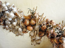 Bio onion and garlic Royalty Free Stock Photography