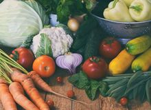 Bio organic fresh summer vegetables - first harvest of organically grown cabbage, cucumber, carrot, zucchini, pepper, onion, eggpl Stock Images