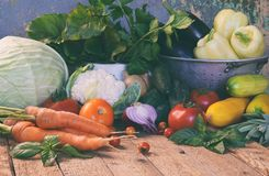 Bio organic fresh summer vegetables - first harvest of organically grown cabbage, cucumber, carrot, zucchini, pepper, onion, eggpl stock image