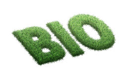 Bio palabra Foto de archivo libre de regalías