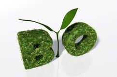 Bio palabra con una planta y el mundo Imágenes de archivo libres de regalías