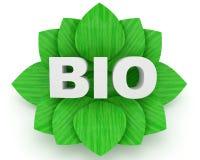 BIO palabra y hojas verdes sobre un fondo blanco Foto de archivo