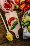 Bio- peperoni dal giardino fotografie stock libere da diritti