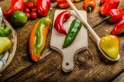 Bio- peperoni dal giardino immagine stock