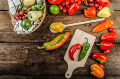 Bio peppers from the garden Royalty Free Stock Images