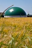 Bio planta de gás em um campo de milho Imagem de Stock Royalty Free