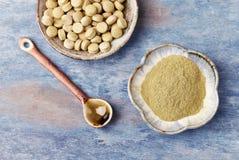 Bio- polvere e compresse verdi dell'ERBA di ORZO Concetto per un completamento dietetico sano fotografia stock