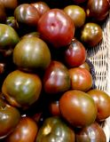 Bio- pomodori maturi freschi fotografie stock