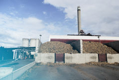 Bio power plant with storage of wooden fuel biomass against bl Stock Photography