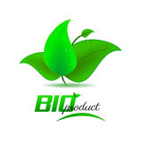Bio product background with green leaves and water drops Stock Photography