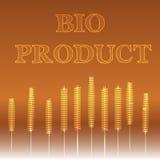 Bio produkt Royaltyfri Bild