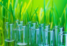 Bio química Foto de archivo libre de regalías
