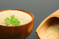 Bio quinoa seeds Stock Images