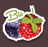 Bio raspberries tag Royalty Free Stock Photo
