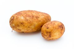 A bio russet potato isolated white background. Stock Image