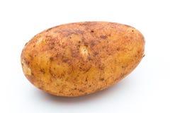 A bio russet potato isolated white background.  stock photos