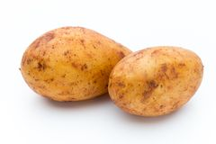 A bio russet potato isolated white background.  stock photography