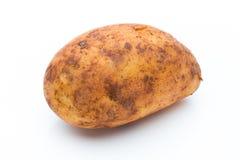 A bio russet potato isolated white background.  stock photo