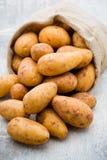 A bio russet potato wooden vintage background. A bio russet potato wooden vintage background royalty free stock image