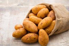 A bio russet potato wooden vintage background. A bio russet potato wooden vintage background royalty free stock photos