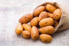 A bio russet potato wooden vintage background.  stock image