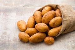 A bio russet potato wooden vintage background. A bio russet potato wooden vintage background royalty free stock photo