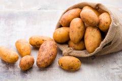 A bio russet potato wooden vintage background. A bio russet potato wooden vintage background stock photos