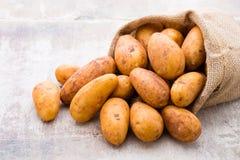 A bio russet potato wooden vintage background. A bio russet potato wooden vintage background stock images