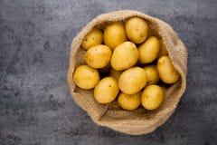 A bio russet potato wooden vintage background.  royalty free stock image