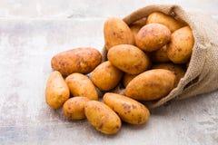 A bio russet potato wooden vintage background.  stock photography