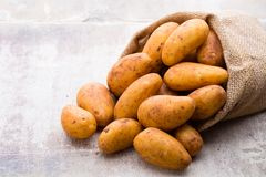 A bio russet potato wooden vintage background.  royalty free stock photography