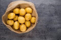 A bio russet potato wooden vintage background.  royalty free stock photo