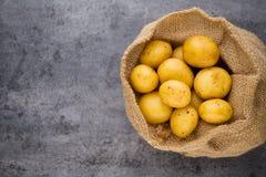 A bio russet potato wooden vintage background.  royalty free stock photos
