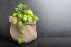 Bio salto de la cerveza fotografía de archivo