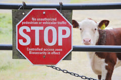 Bio Security or Biosecurity and Farm Animals. A sign is posted in an attempt to keep germs and disease infecting farm animals Royalty Free Stock Images