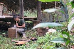 Bio- selvaggio del miele coltivato in giungla - creatore dell'alveare fotografia stock