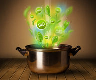 Bio signs coming out from cooking pot. Healthy bio signs coming out from cooking pot Royalty Free Stock Photography