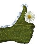 bio souhait de la main 2009 Photos libres de droits