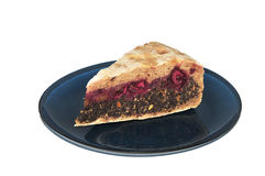Bio sour-cherry and poppy cake on blue plate stock photography
