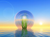 Bio sphere Royalty Free Stock Photography