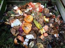 Bio- spreco e composta freschi immagine stock