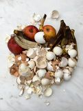 Bio--spreco fresco Fotografia Stock Libera da Diritti