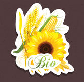 Bio sunflower tag Royalty Free Stock Image