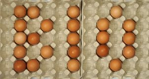 BIO Title Made of Eggs Stock Image