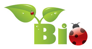 Bio- titolo con il ladybug Fotografia Stock