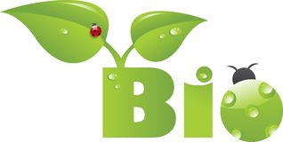 Bio- titolo con il ladybug verde Fotografia Stock